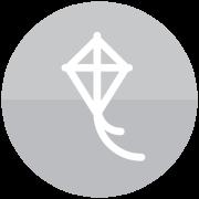 icon_Solucionadores